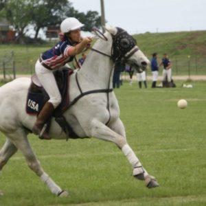 polo gear