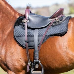 Natural Horsemanship Best For the Horse Tack