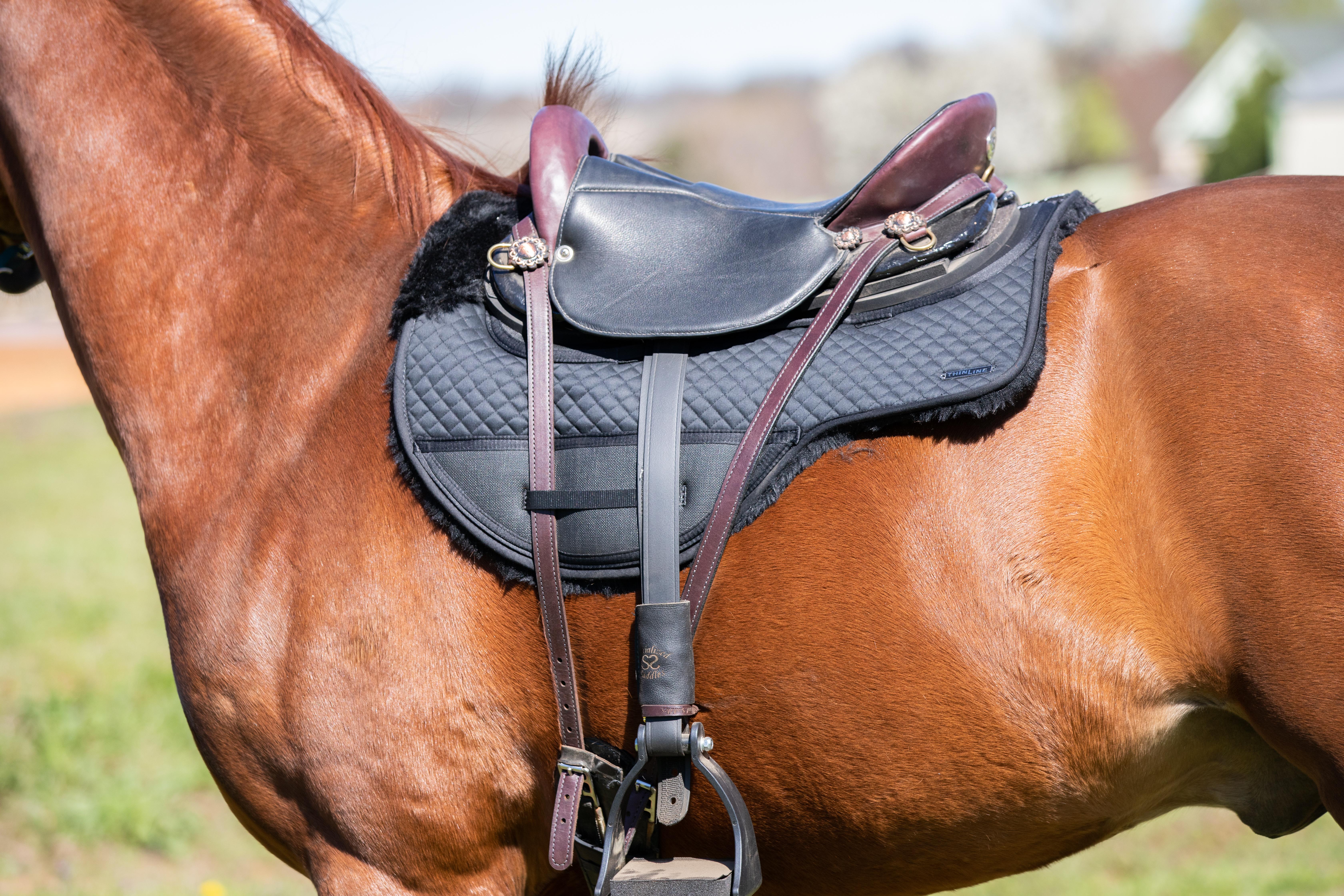 Endurance & Drop Rigging Saddle Pad