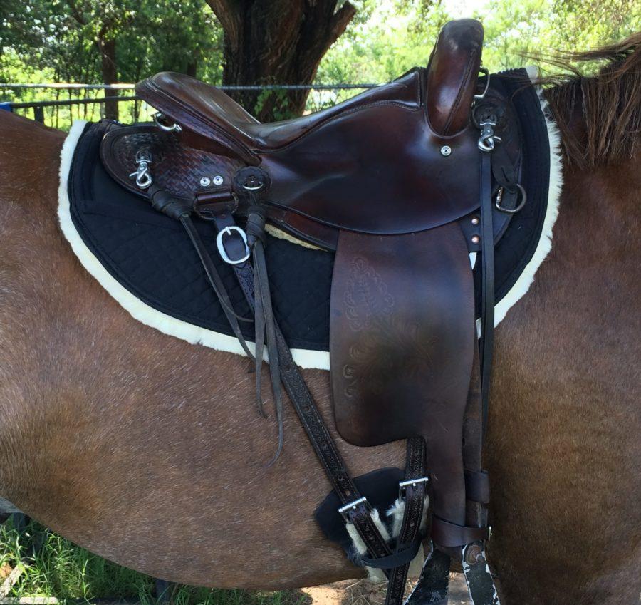 Full Sheepskin Endurance Round Skirt Saddle Pad