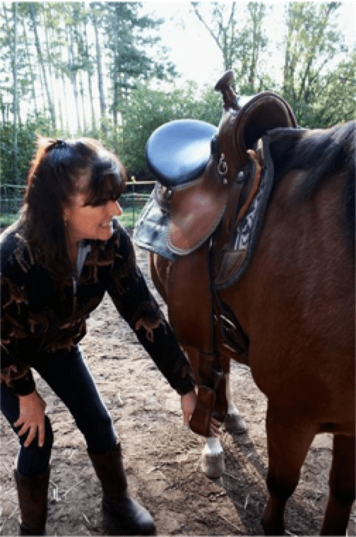Saddle Fitting: Size Does Matter