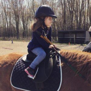 Pony Size Tack