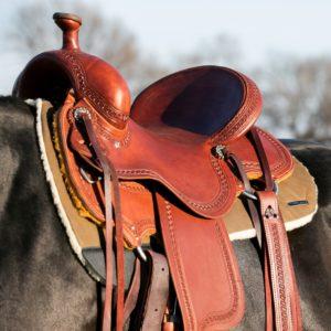 Western Saddle Pads - Felt, Fleece, Cotton, Show, Ranch, & More