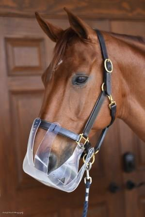 Flexible Filly Slow Feed Grazing Muzzle