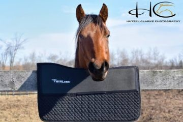 Western Gel Saddle Pad 7304